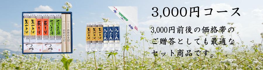 ギフト3000円コース