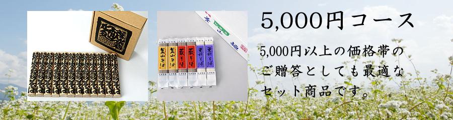 ギフト5000円コース